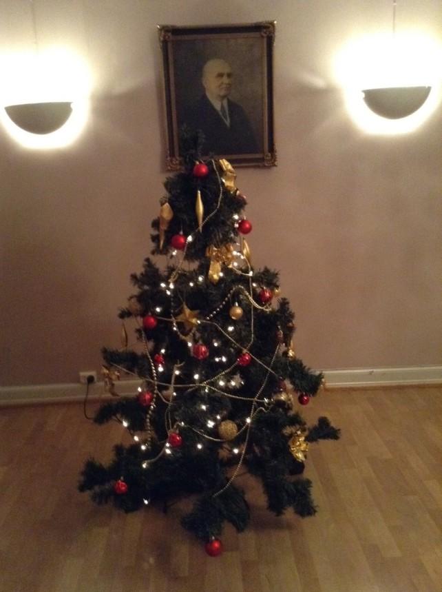 The Christmas tree at Schafteløkken